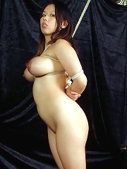 Asian Tiger in Bondage