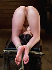 HogtiedThe most beautiful girls on the planet, suffering and cumming.