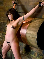 Sasha Grey doms at Wiredpussy!!!